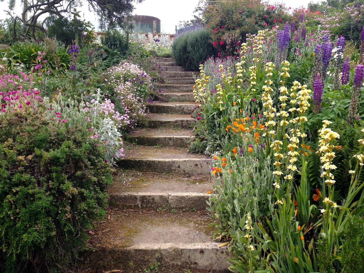 Wander the garden paths.