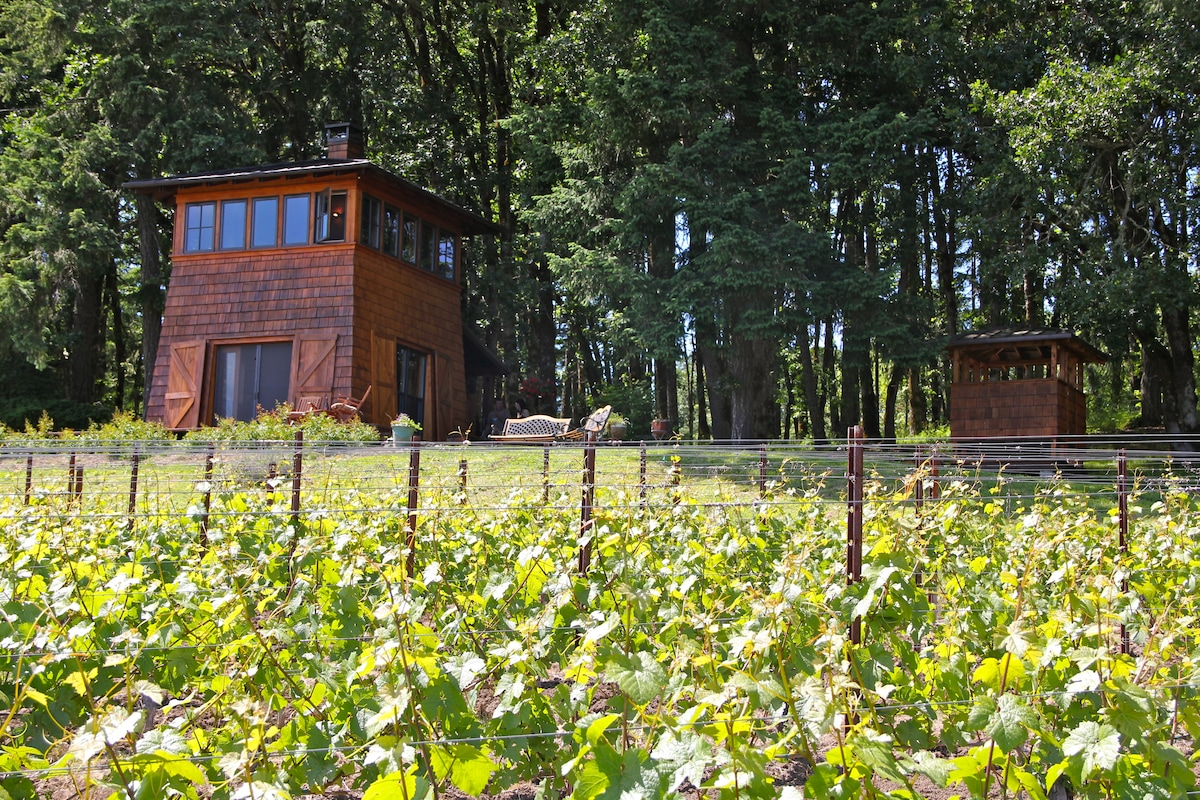 Front view of the cabin and surroundings, vineyard and wooded area - perfect for an afternoon stroll after a day of wine tasting!