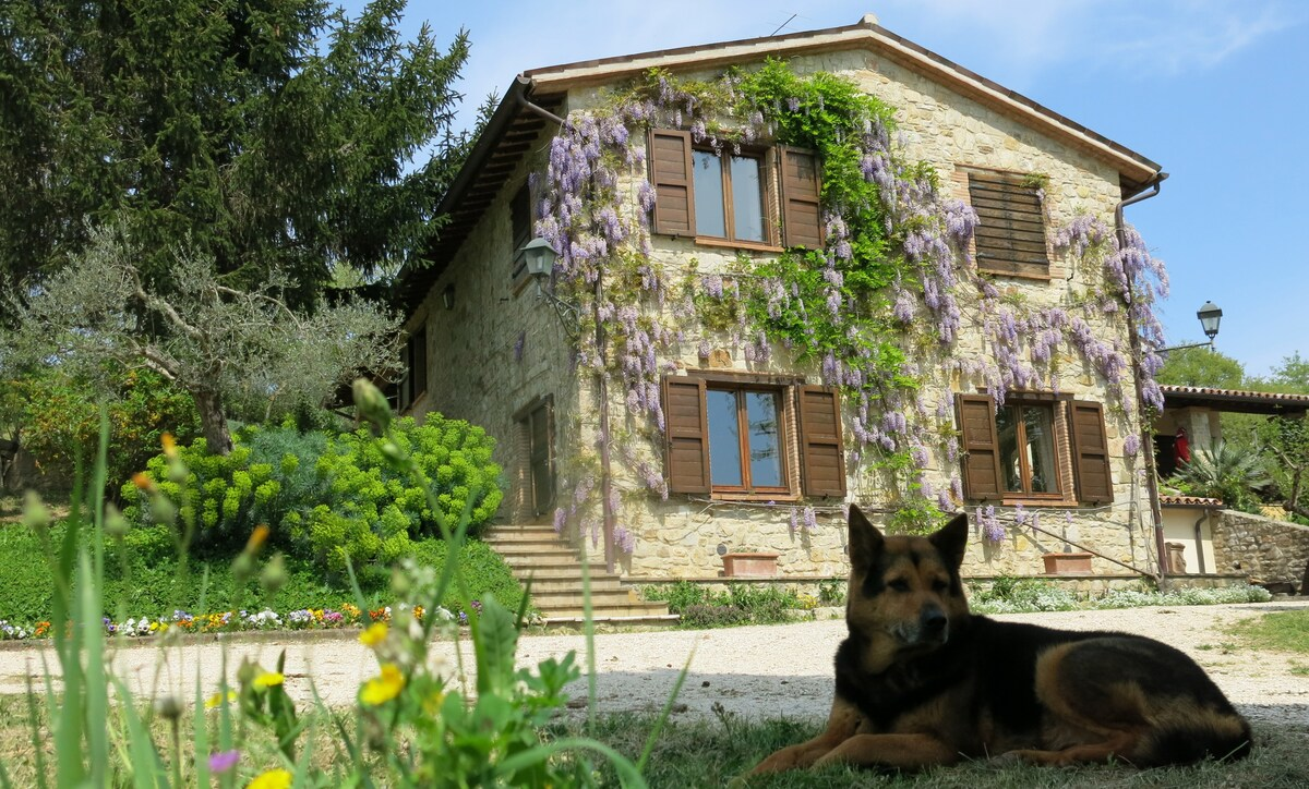 Nestled in the hills of Umbria