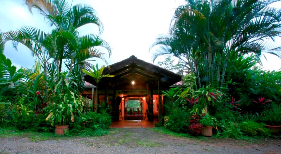 Magical Tropical Fantasy - Room 2