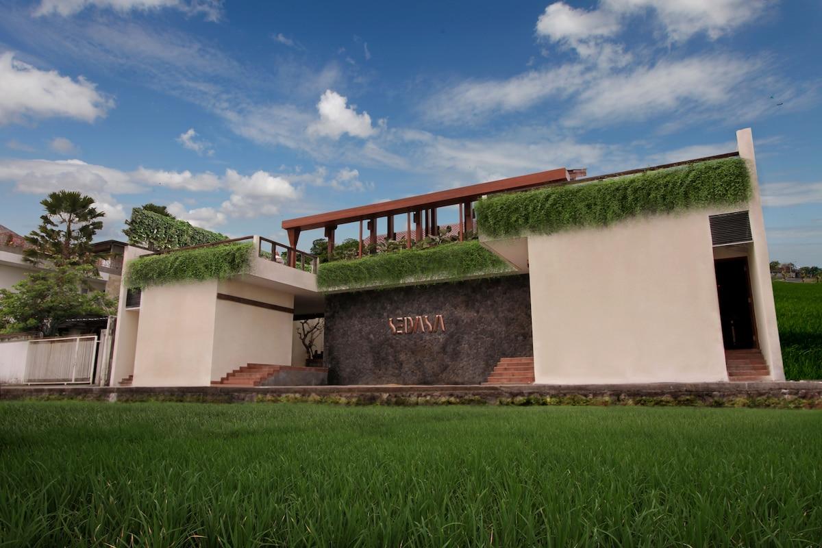 Sedasa Lodge Canggu Surf & Retreat2