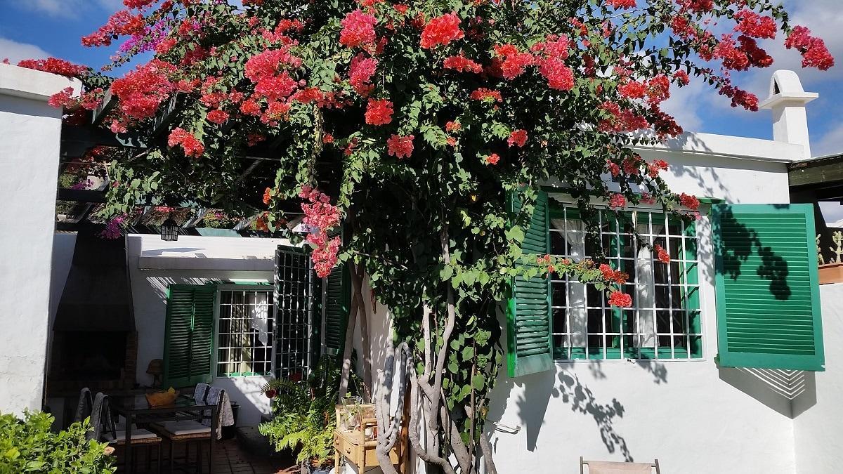 Villa in Maspalomas 3