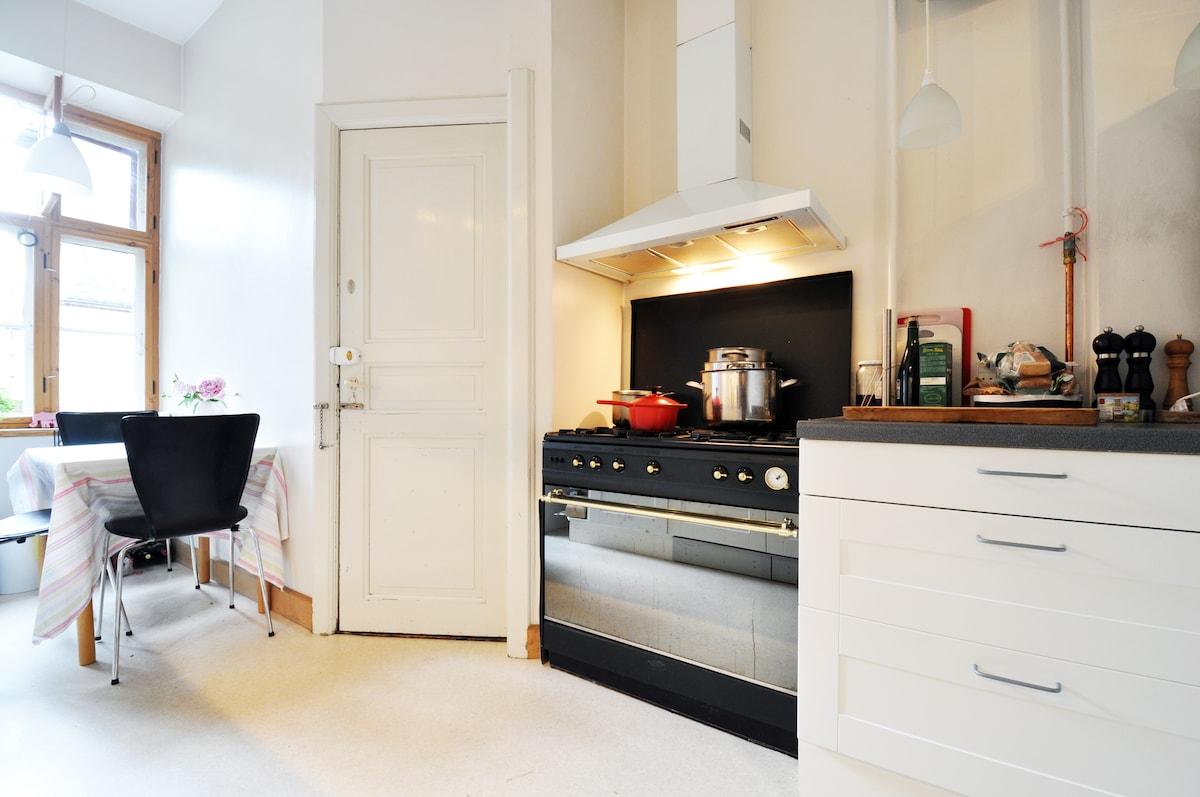 Large Central apartment Copenhagen