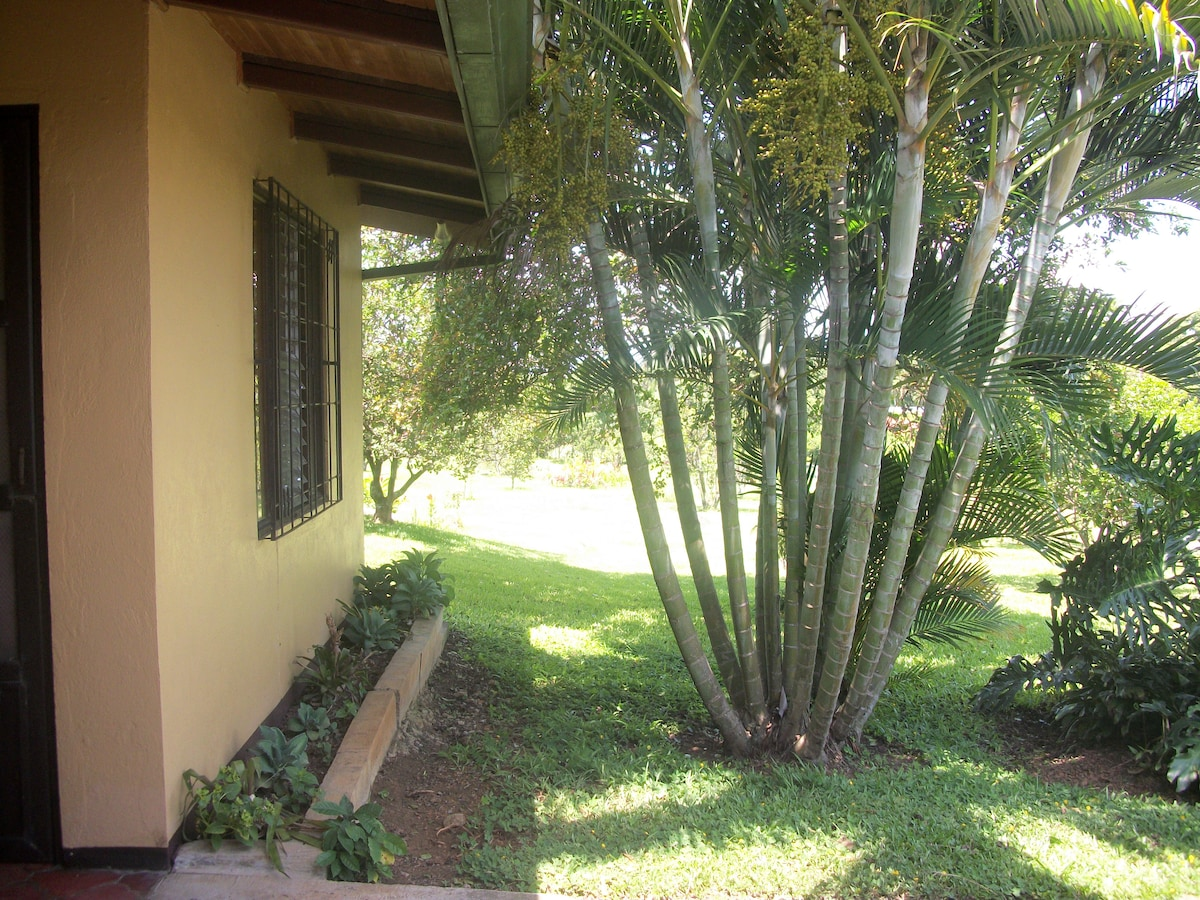 Front garden side view of unit 3