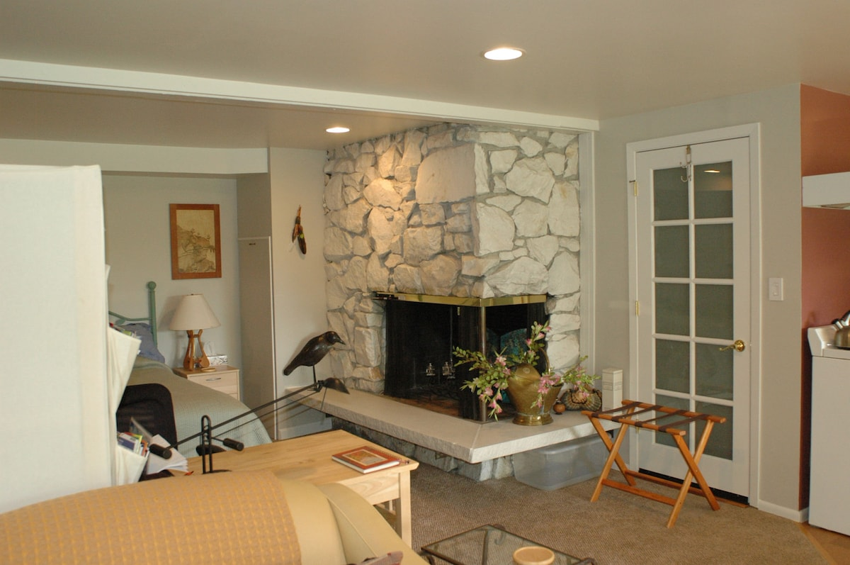 Candlelabra in Fireplace and Open Living Area