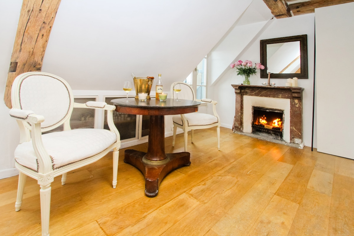 Welcome to your cosy flat in Paris! Enjoy a glass of wine by the fire!