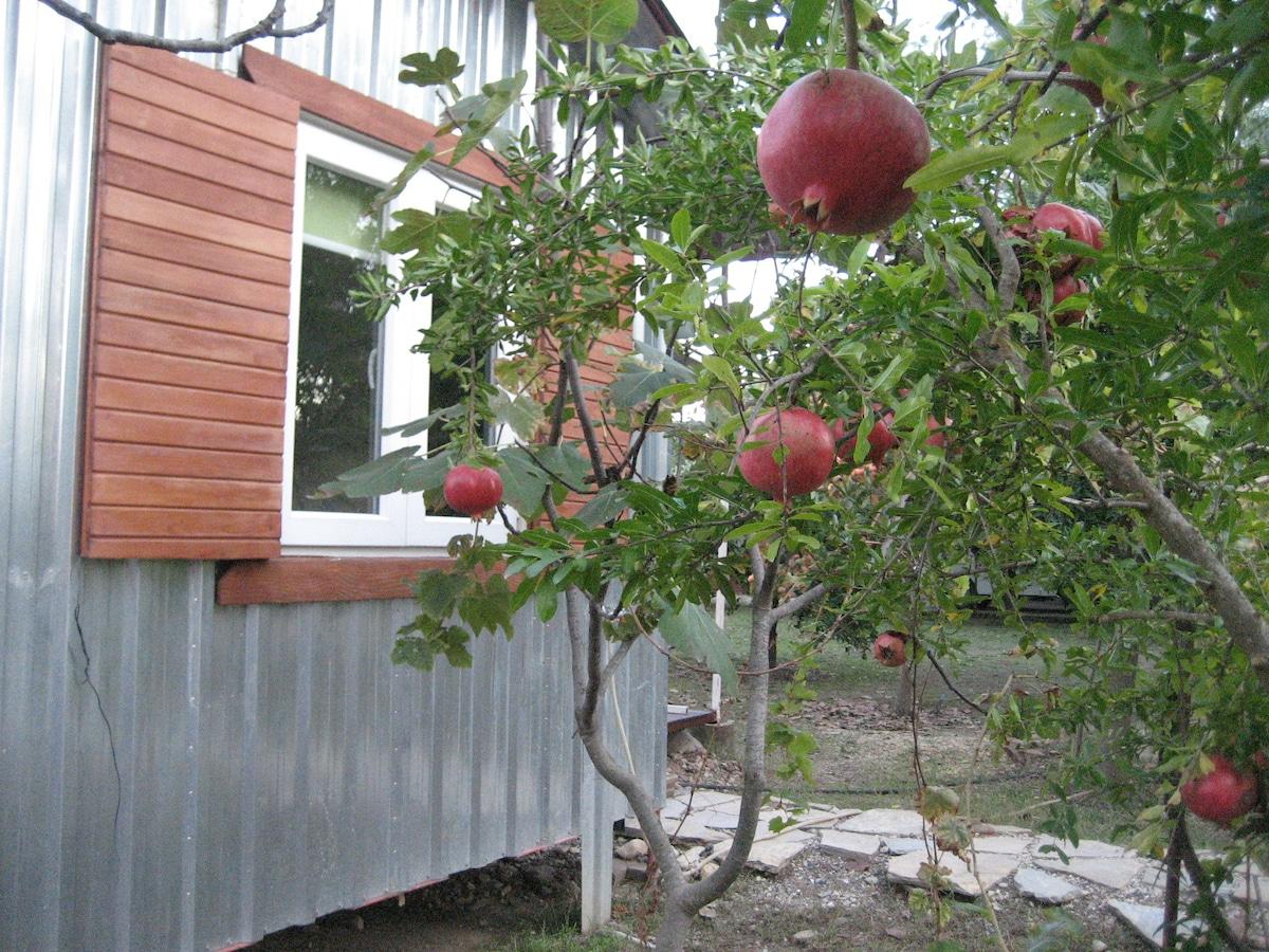 """Stuga"" in Fruit Garden incl. Bikes"