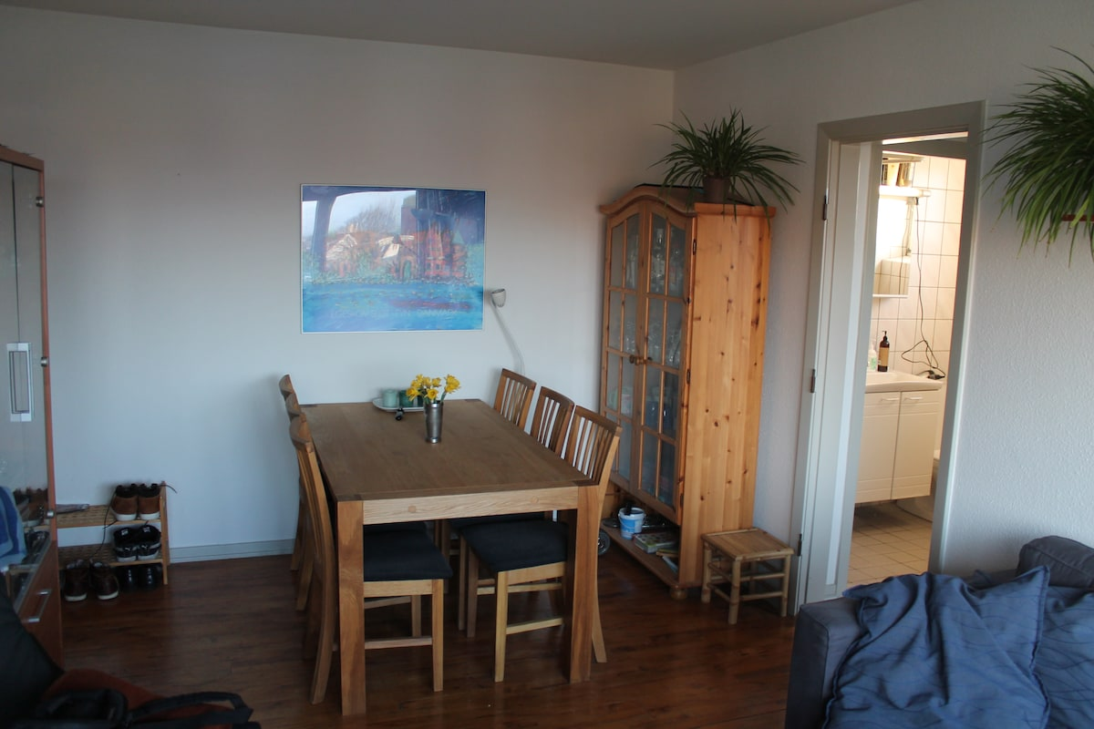 Nice one bedroom apt. near Aalborg