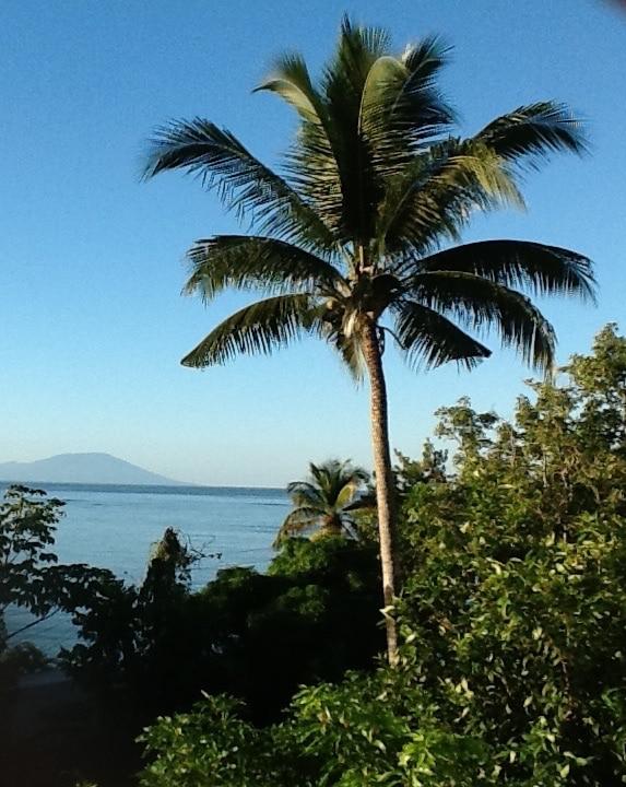 Beach view from a Caribbean home