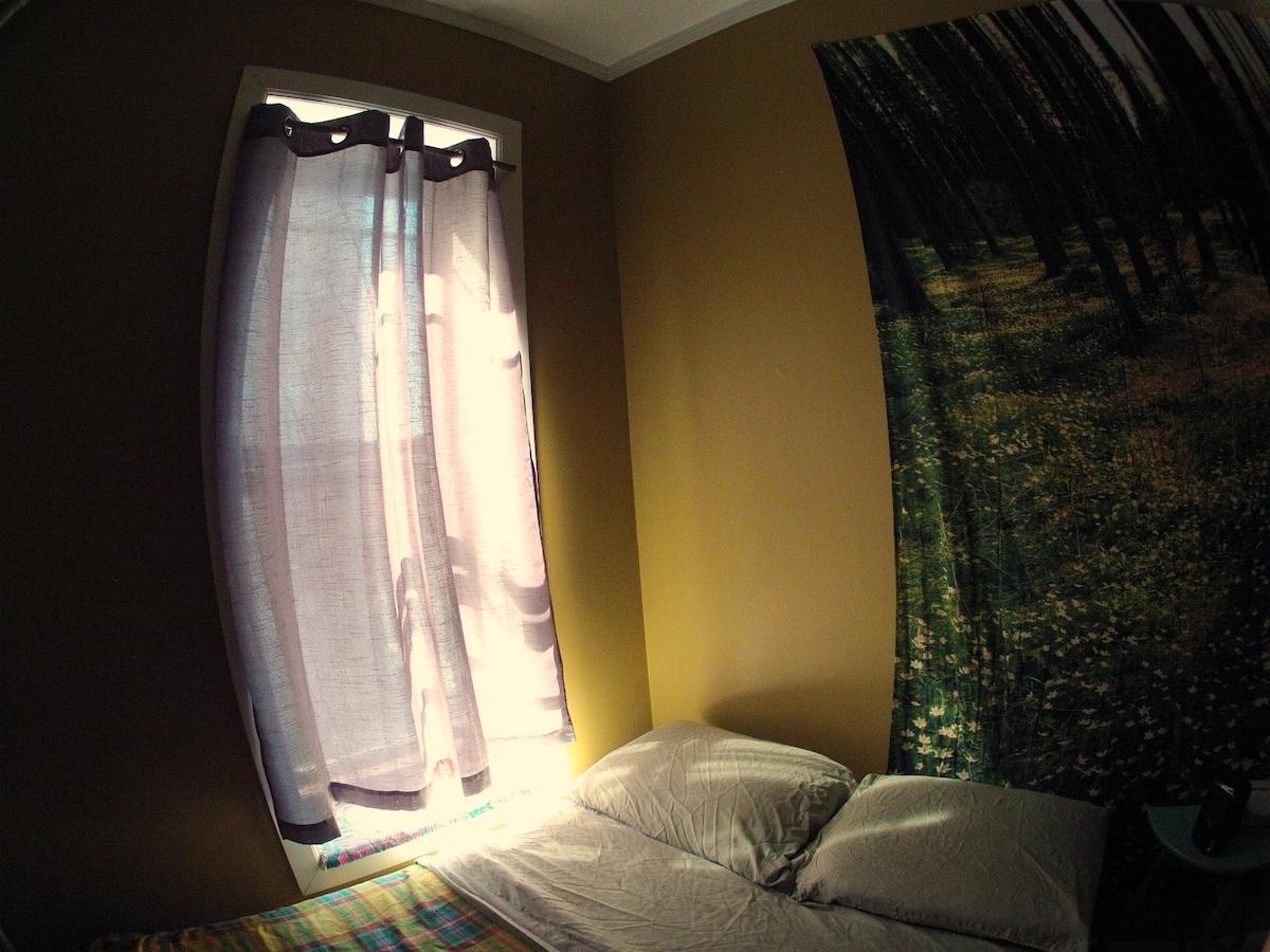 Forest Room in Big Sunny Harlem Apt