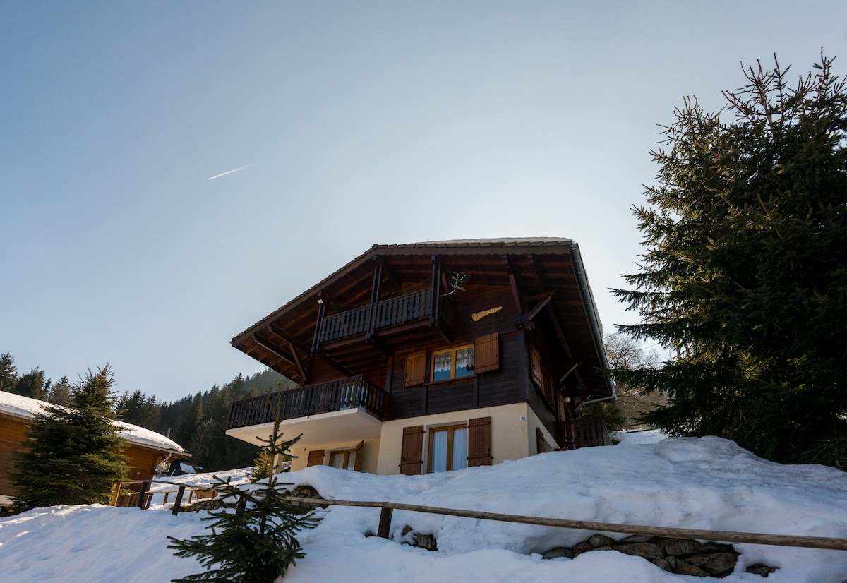Entire Apt in Cozy French Chalet