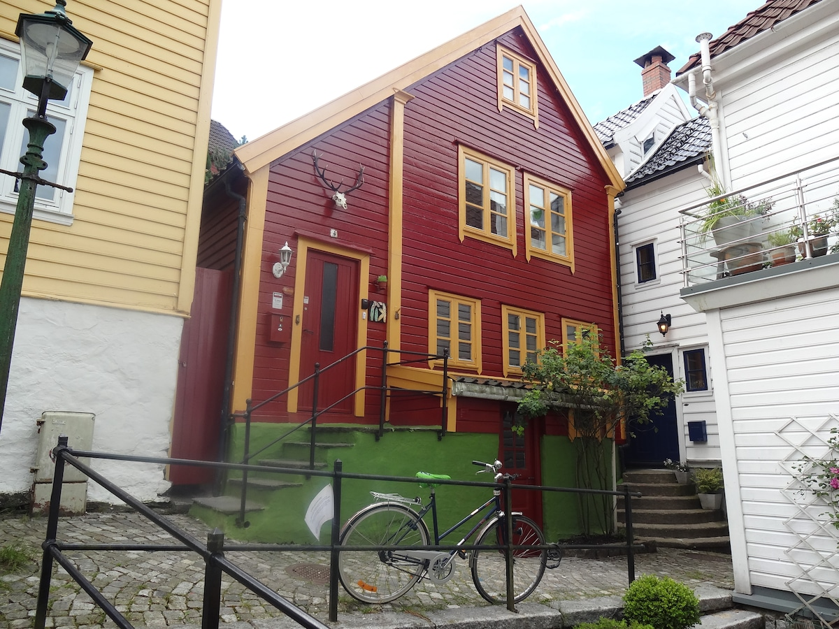 Nice Room, unique house, citycentre