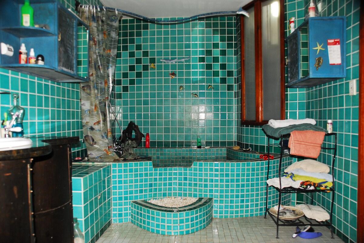 Bathtub Spa /shower, towel rack . Handmade tiles. Step up to spa pool/ bath