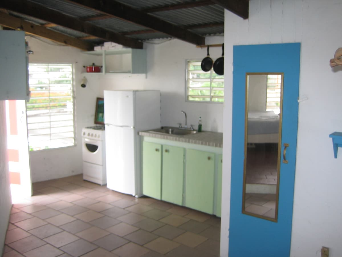 Bohemiam In-Town Vieques Penthouse