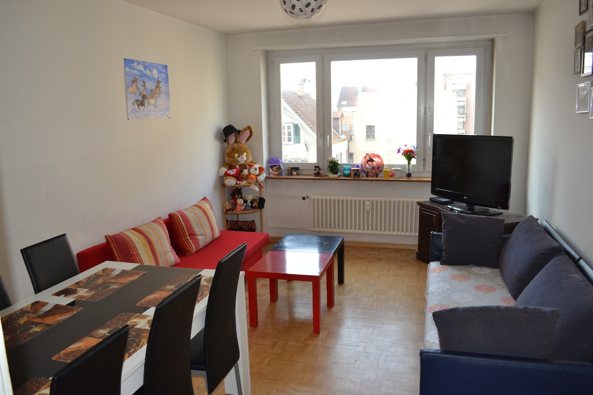 Economical Apartment @ Messeplatz
