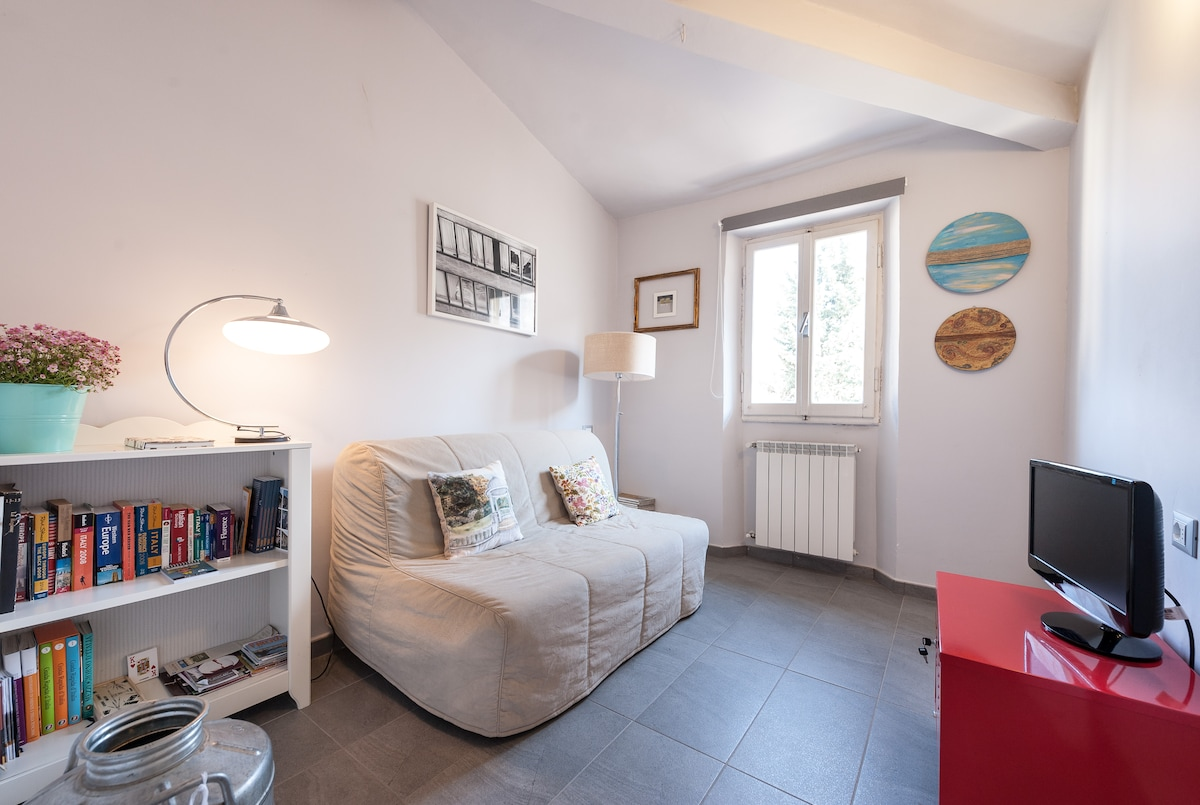 Central Quiet 2Rooms in Florence!