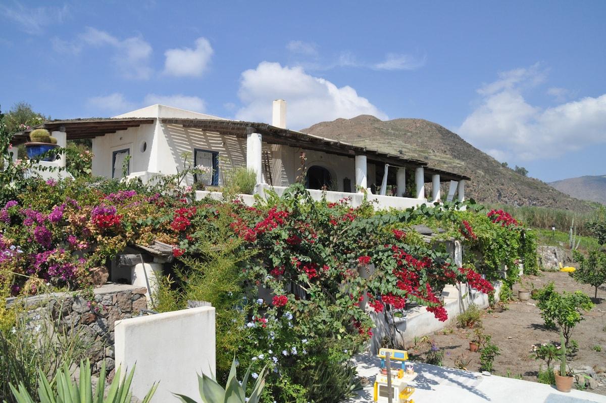 La vista frontale mostra i due piani della casa, con i bagli superiore e inferiore coperti di canne, vite e fiori