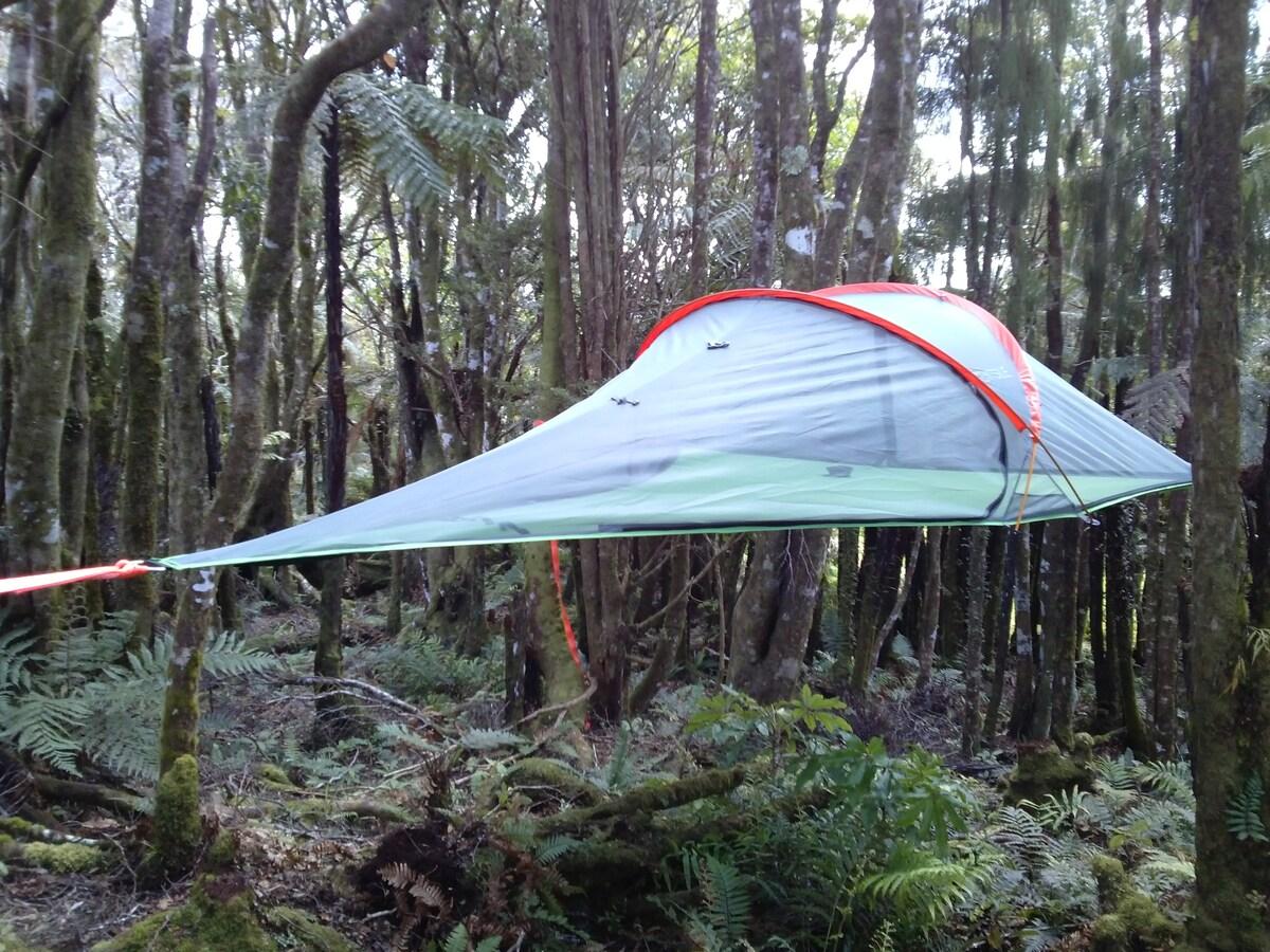 Sleep in a tree tent!