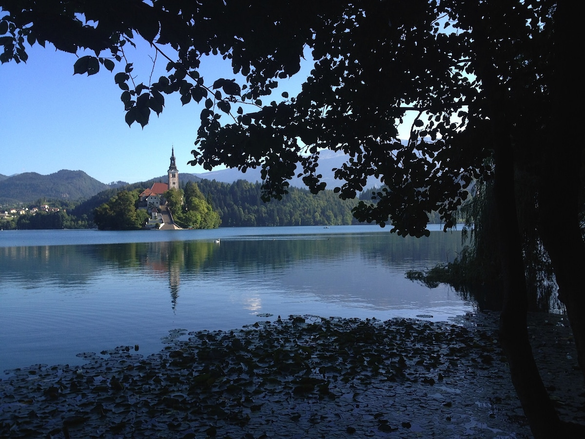 Magical Lake Bled, Slovenia