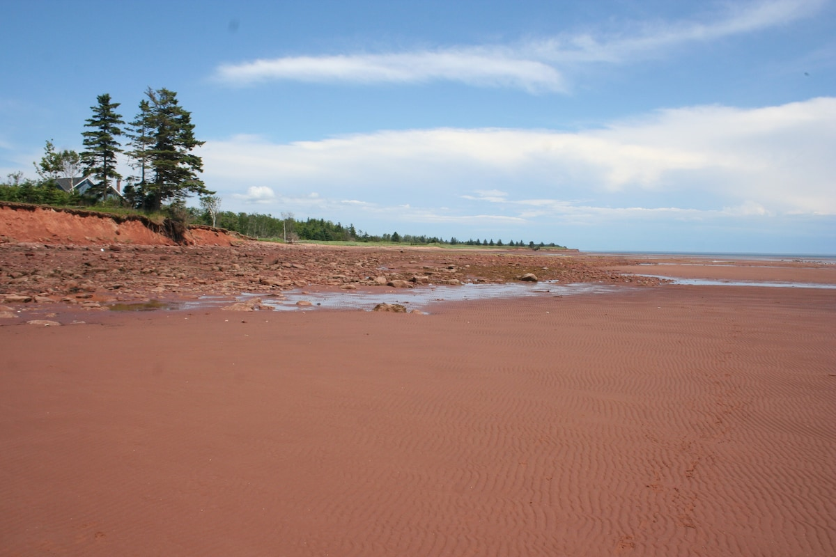 Our beach at low tide