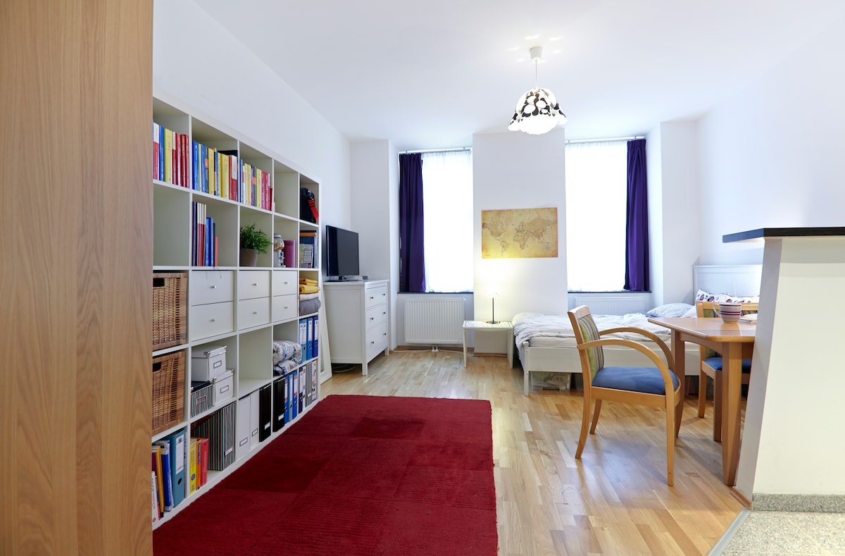 sweet & central apartment in Vienna