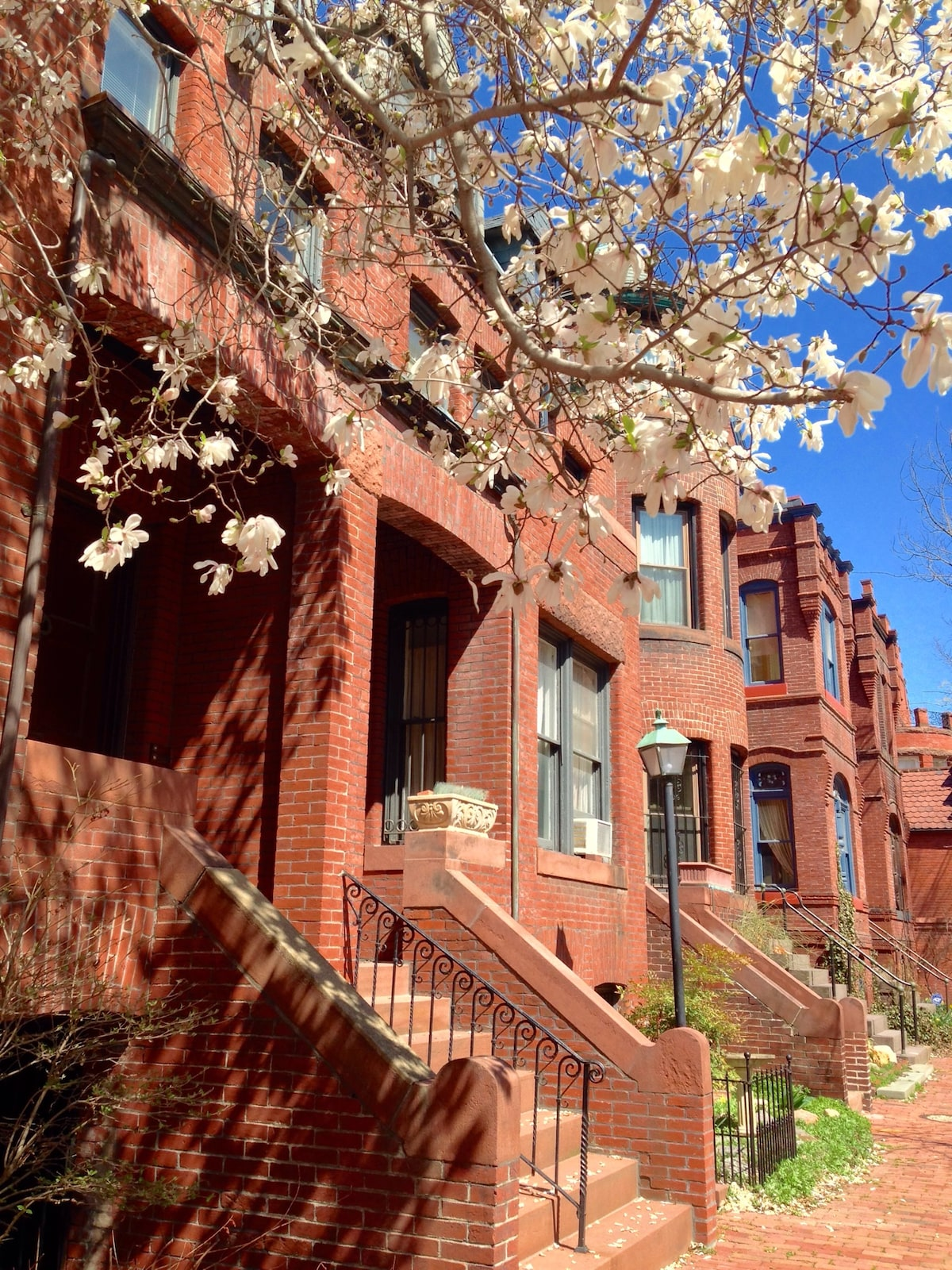 Deluxe 1BD in Dupont Circle