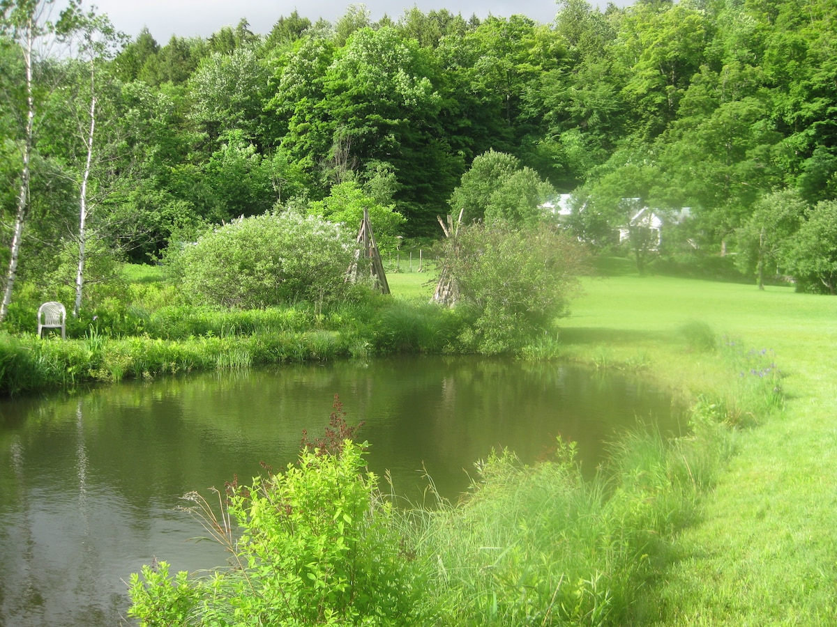View of Mountain Valley Retreat from our pond
