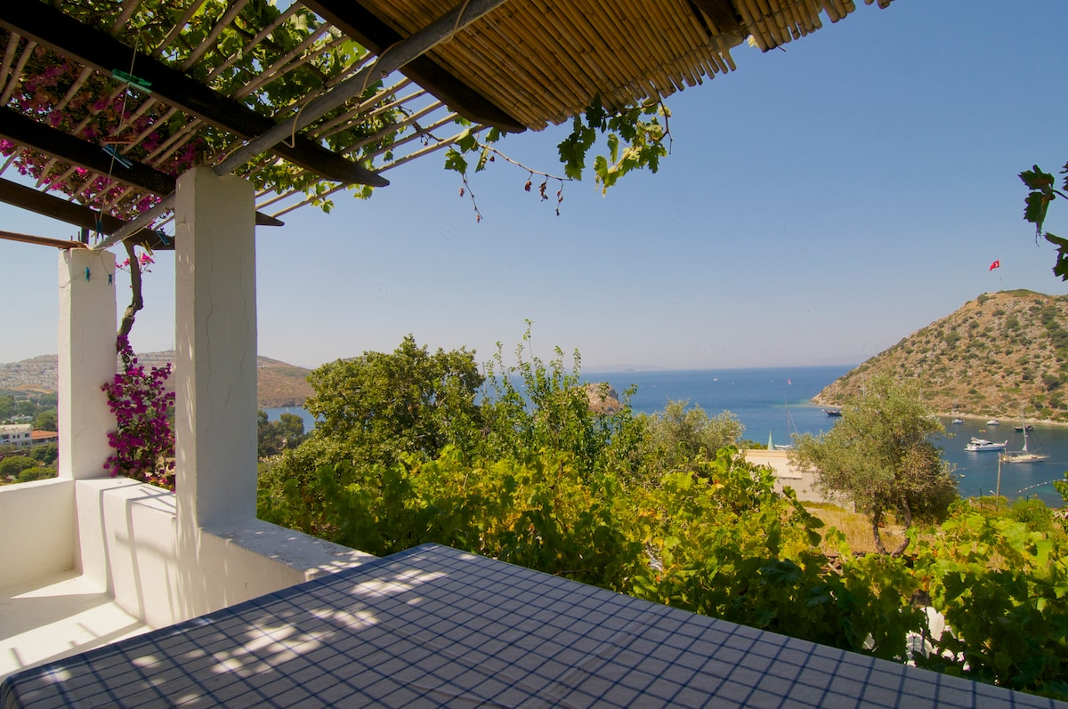 Great view and garden, sea nearby!