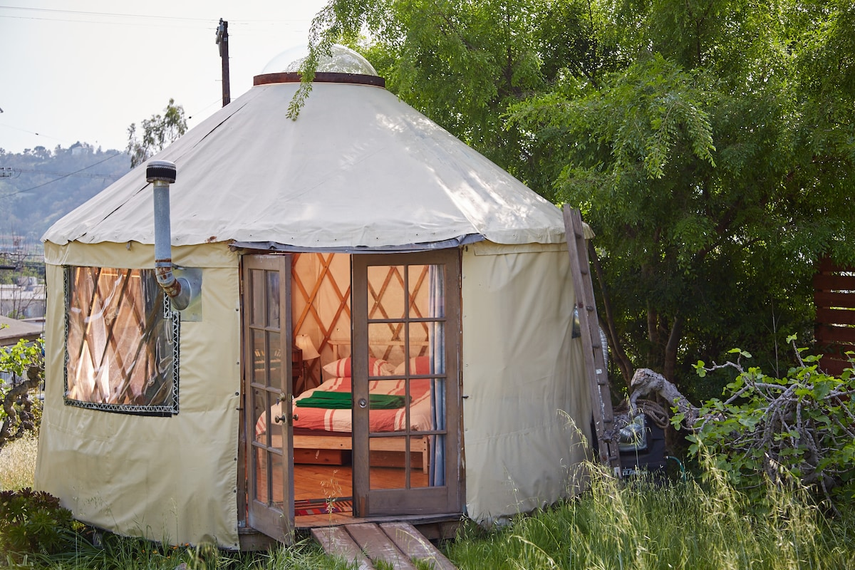 The yurt looking south (March 2015)
