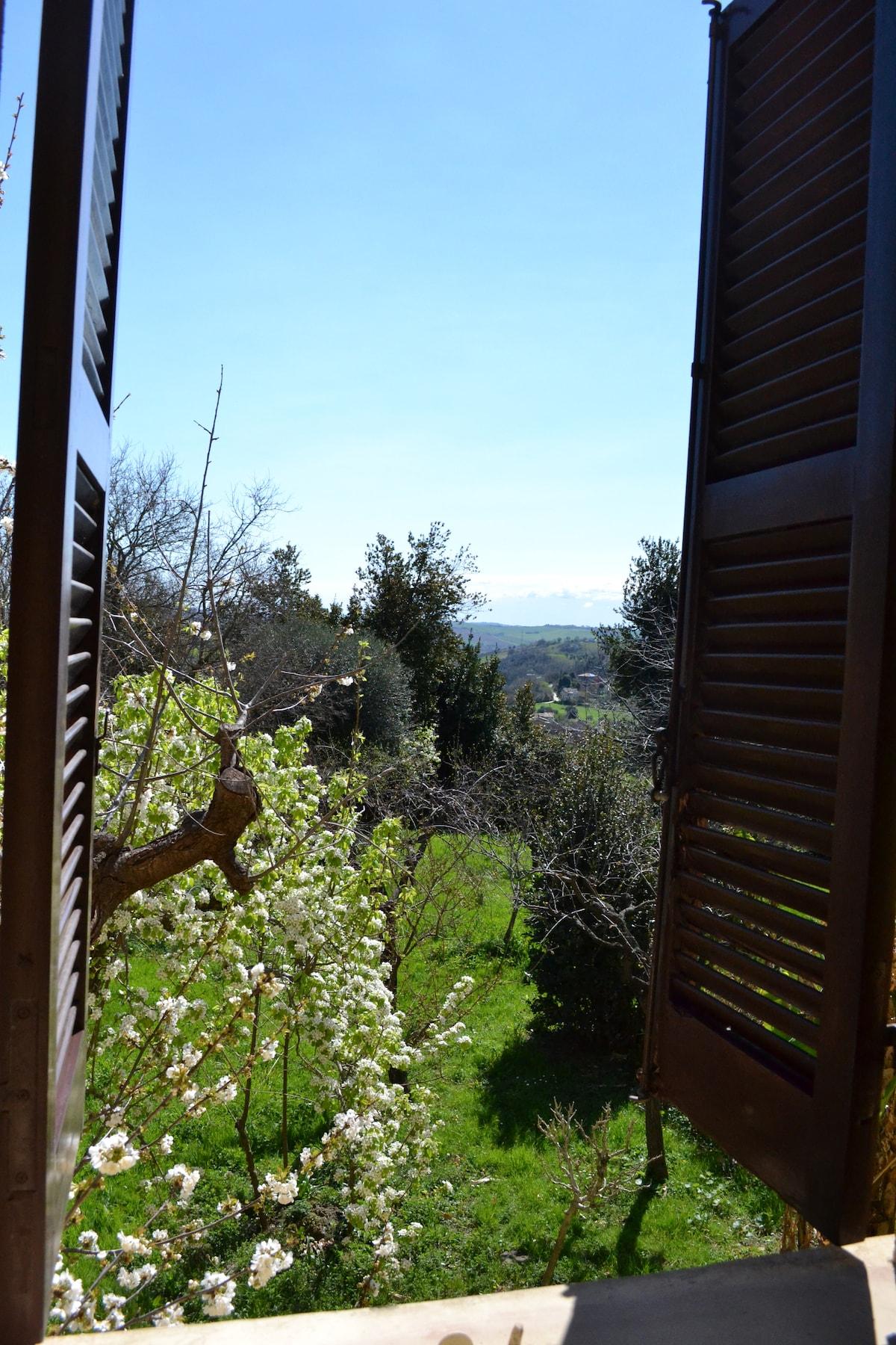 Stanza romantica con vista giardino