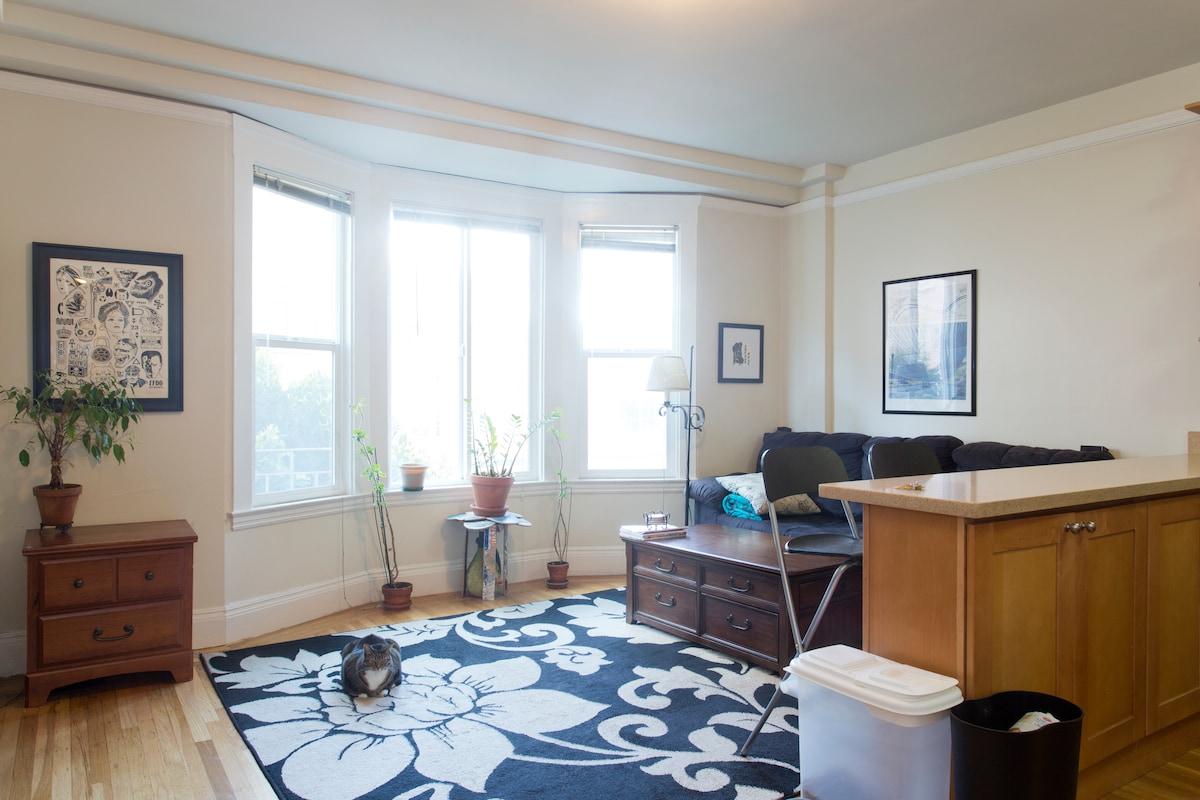 1 Bedroom in Lower Nob Hill