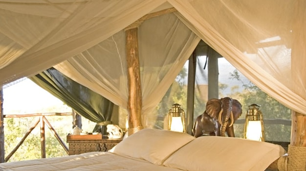 Interiors of the Tents