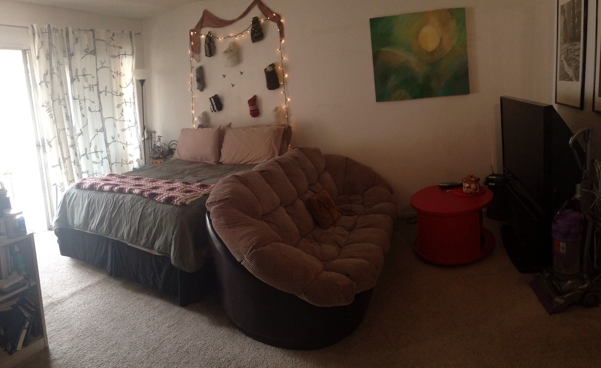 most recent picture- april 2015!  shows new TV, drapes and bed