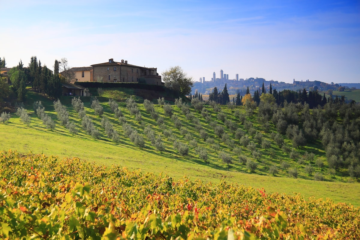 San Gimignano, Montegonfoli SIX