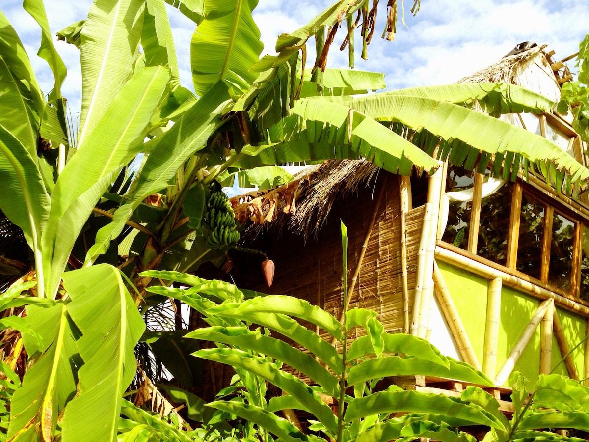 La Jungla Tropical Bungalows Triple