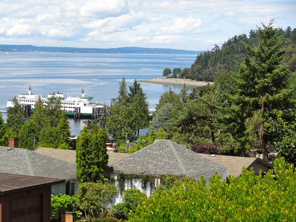 Lincoln Park and Fauntleroy Ferry from my deck