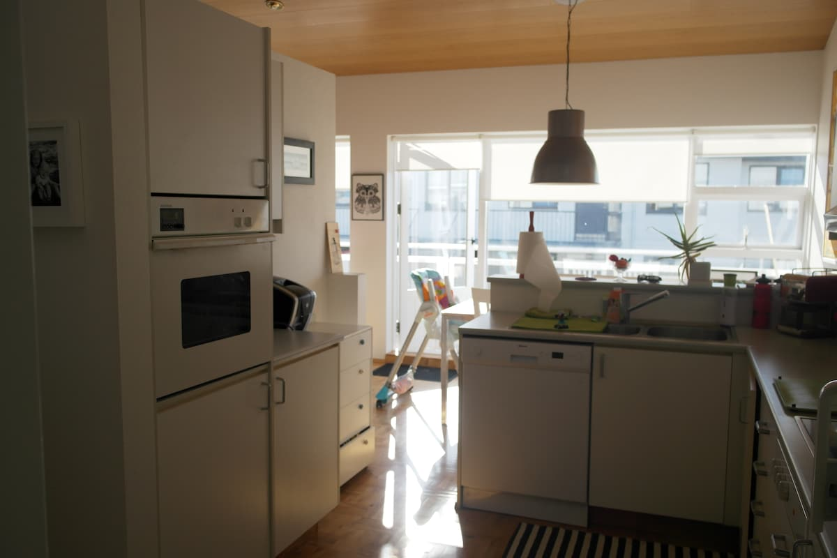 Nice family apartment in Iceland