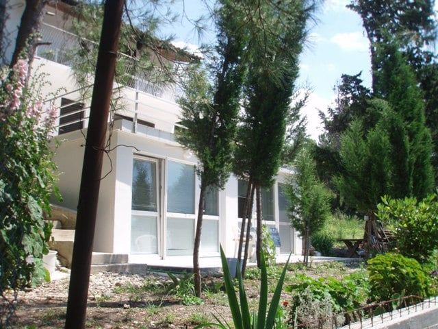 Apartment in pine forest