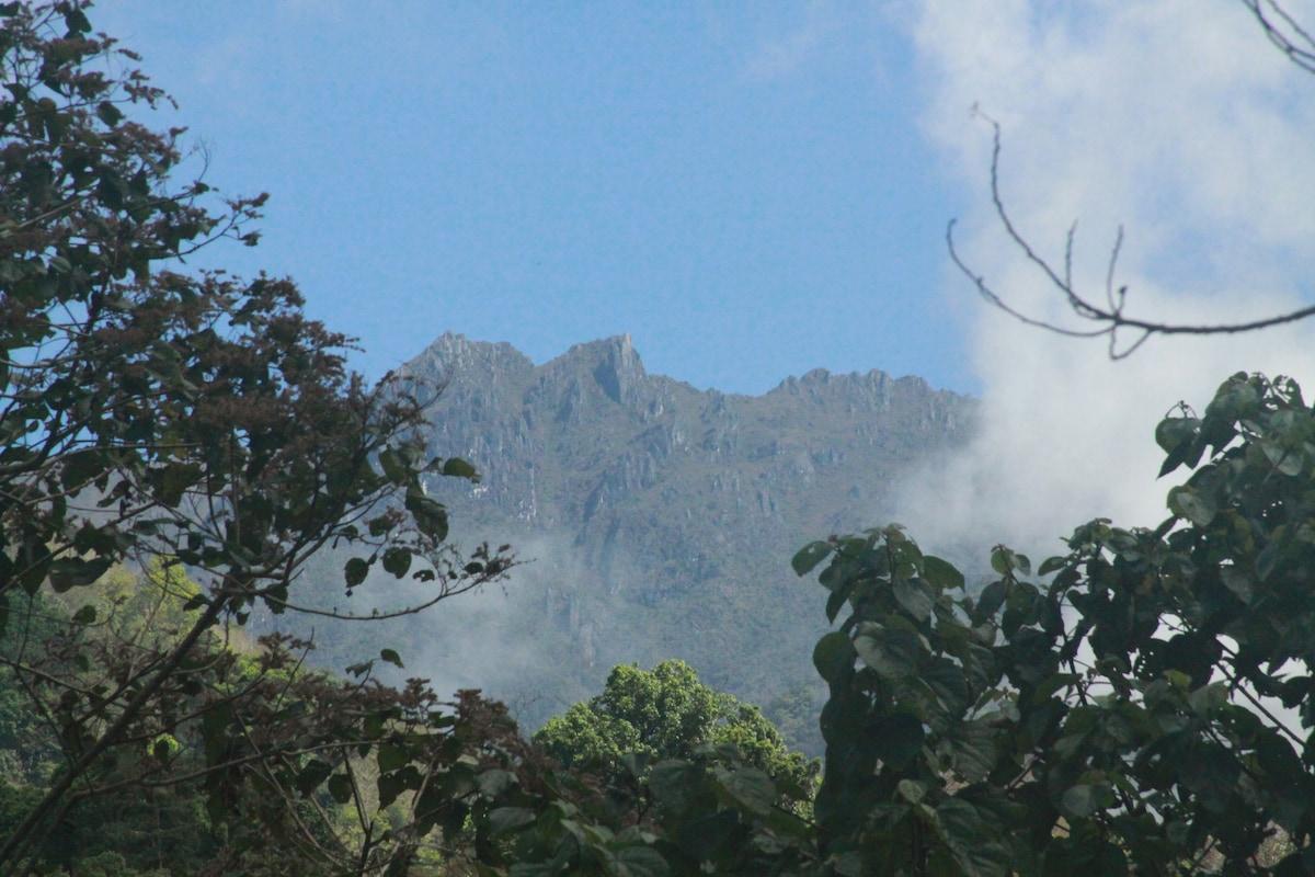 Cloud Forest mountain retreat