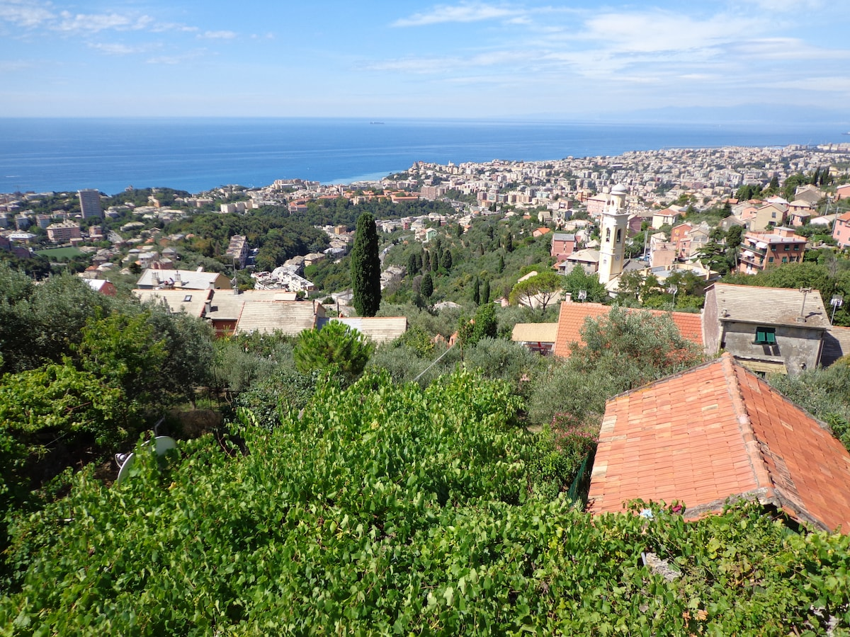 Casetta vista mare