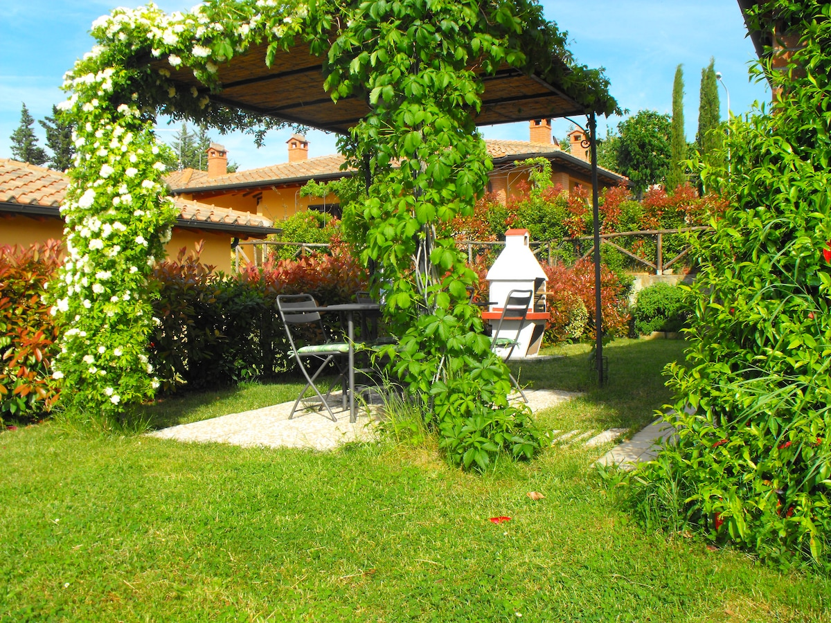 Garden with barbecue.