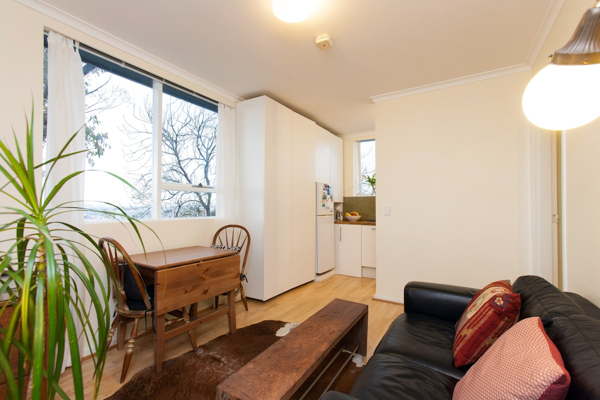 Welcome to Lyndhurst Street! Large windows facing east offer plentiful light and great views of Hawthorn and Mt Dandenong.