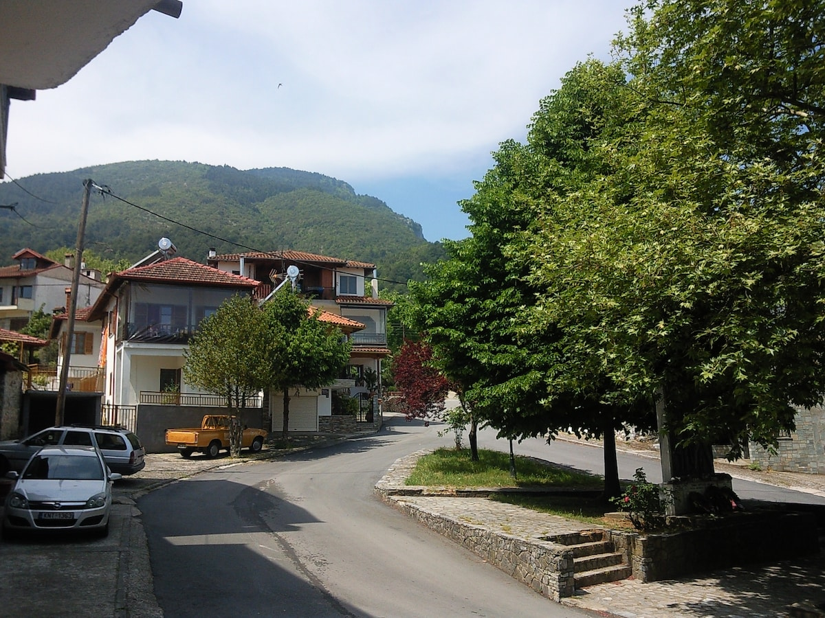 Apartment near Olympus mountain 2