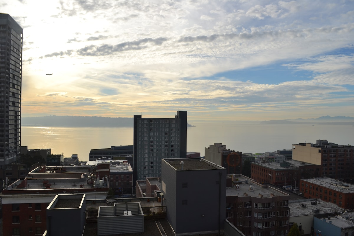 Views and Proximity Luxury Belltown