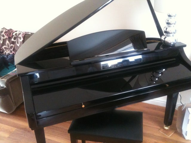 We have a baby grand in the living room.  There's an Xbox and TV too