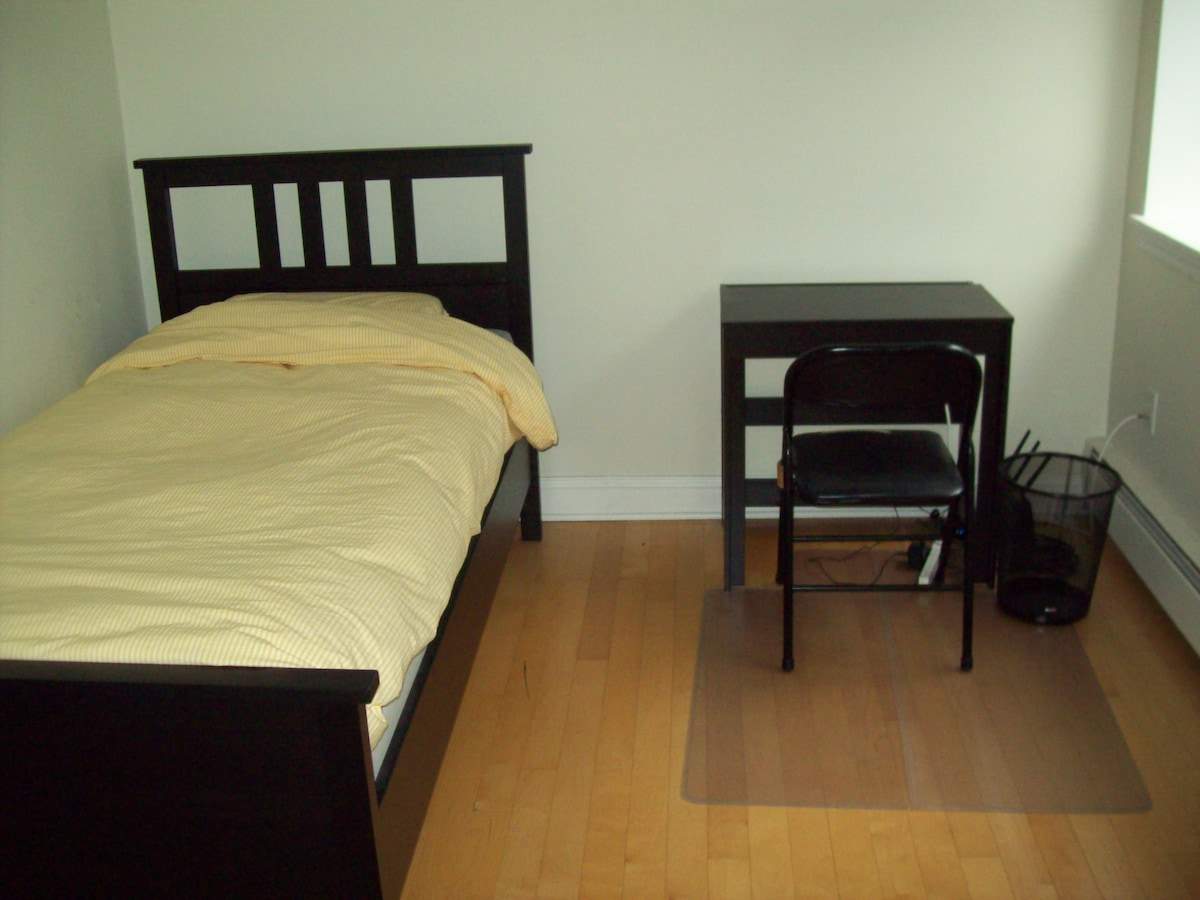 Spacious apartment in Somerville