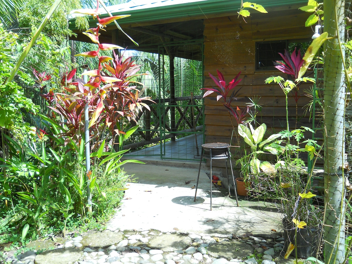 5. chalet north surrounded by a combination of bewitching gardens and jungle wilderness.