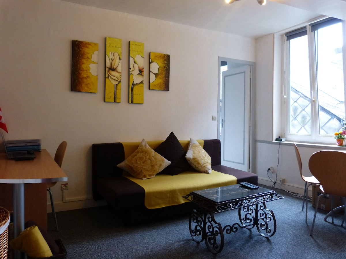 Very nice flat in city center