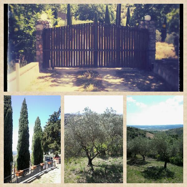 B&B Agriart Guardea Umbria