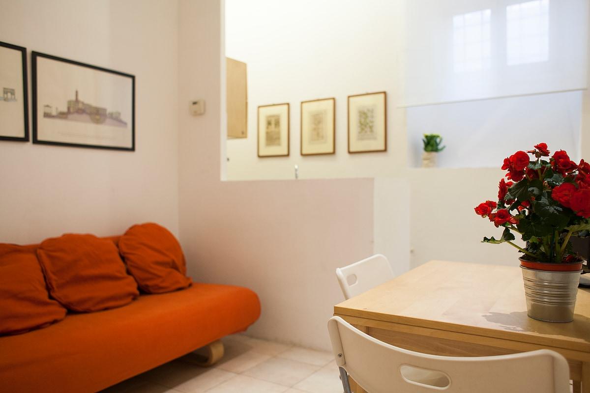 Appartamento Trastevere/Vaticano